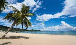 Read more about the article กิจกรรมยามว่างที ชายหาด ที่น่าสนุก